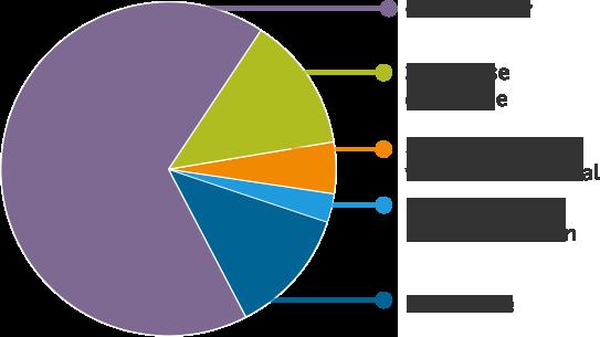 67 % cancer, 13 % crise cardiaque, 5 % accident vasculaire cérébral, 3 % pontage aorticirinarien, 12 % autre